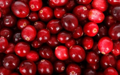 National Eat a Cranberry Day